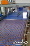 ConveyorsforPackaging15